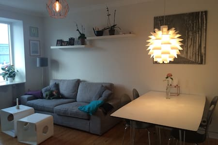 Light and cozy CPH apartment
