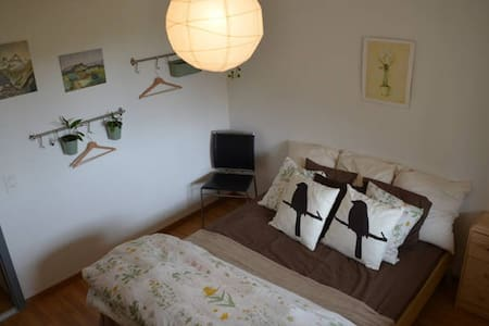 Cozy room in spacious apartment. - Wohnung