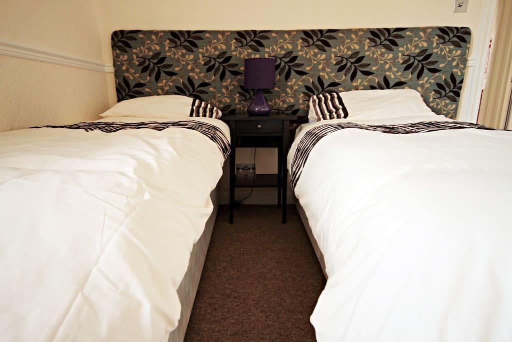 Stylish Suite London SE11 Sleeps 12