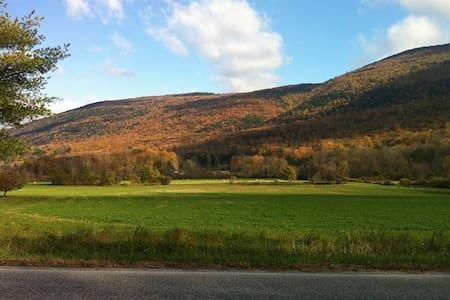 Idyllic Vermont Farmhouse - Ház