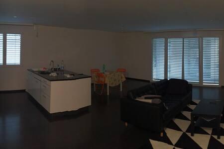 beautiful apartement in crissier
