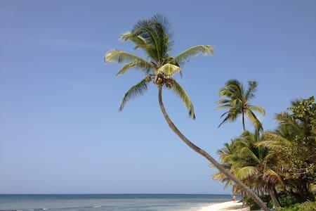 A Piece of Paradise! - St. Croix - Adosado