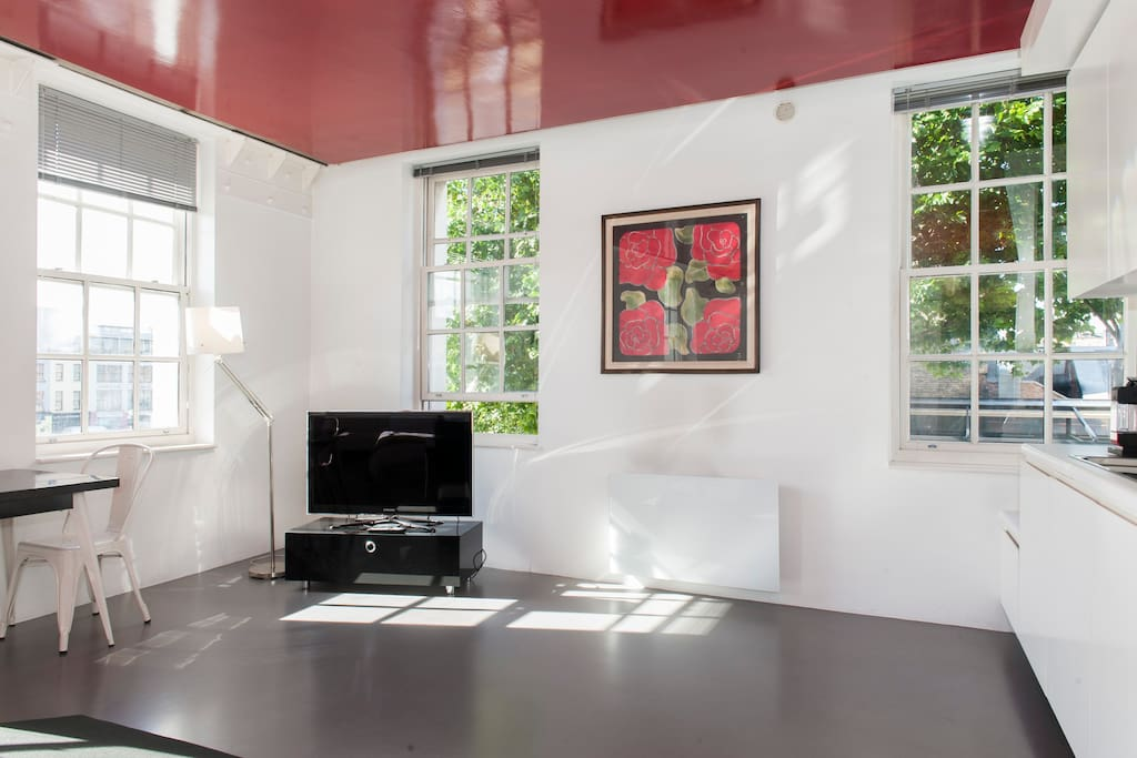 Designer Apt in the heart of Dublin