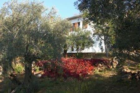 Tradicional Villa Casa - Paltsi - Paltsi Pelio - Villa