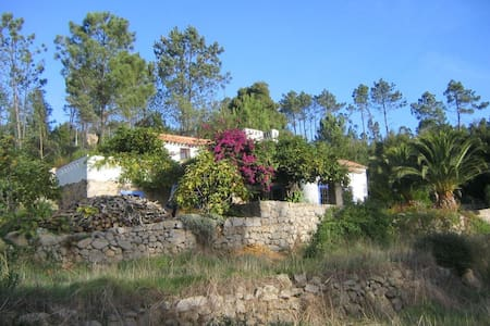 Quinta da Relva FarmHouse B and B - Bed & Breakfast