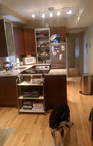 2 BR apt, central and dog friendly! - Washington - Apartment