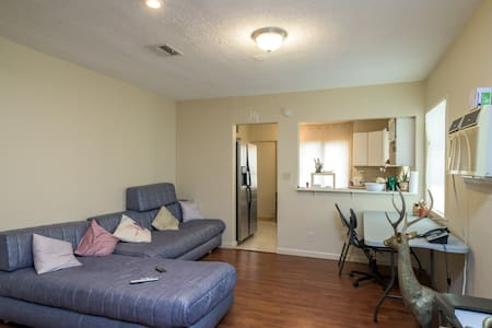 Spacious room, clean, fresh paint - Hollywood - House