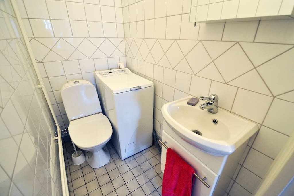 Private toilet and sink