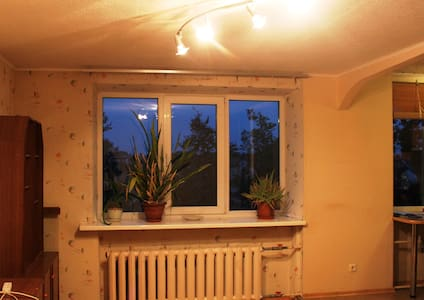 Sunny apartment in the city center - Appartement