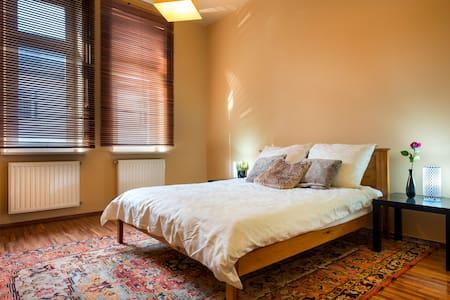 Private Suite w/ Bath in Luxury Apt