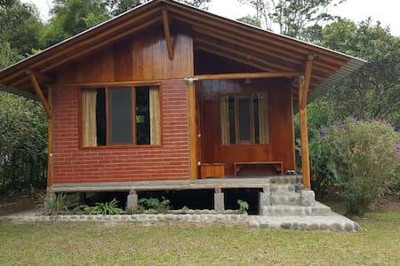 ECO - CABIN IN MINDO - ECUADOR - Rumah