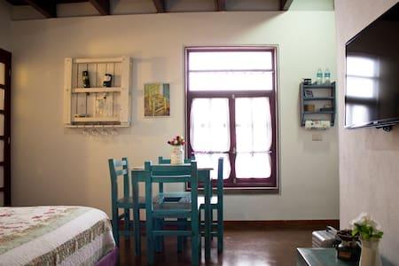 Loft vintage en Centro Histórico - San Luis Potosí - Apartment