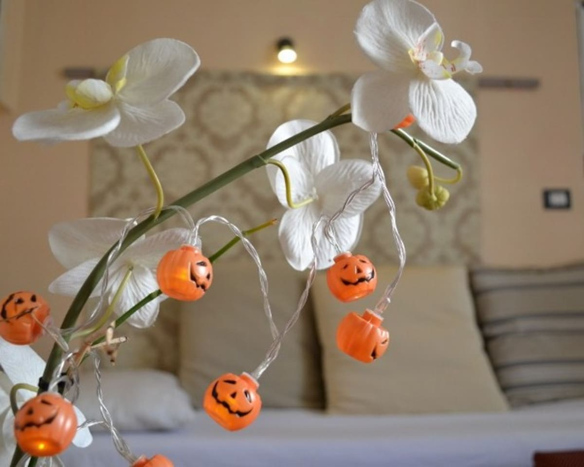 "HAPPY HALLOWEEN SEASON at Love Nest"" The Orchid"""