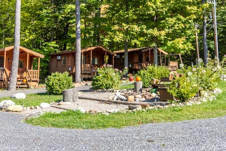 The Spur Lakeside Cabins on Seneca1 - Hytte