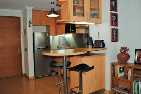 Studio apartment in Providencia - Wohnung