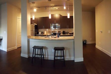 Single room in high end Apartment - Austin - Osakehuoneisto