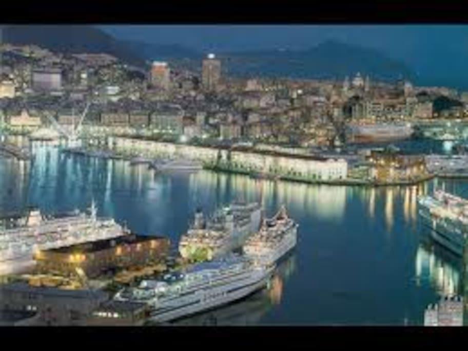 twilight  sightseen  main harbour