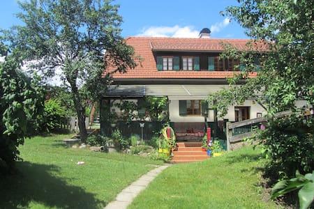 MESSNERGASSLHAUS in Villach Stadt - House