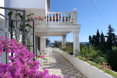 Villa 50 mtr beach