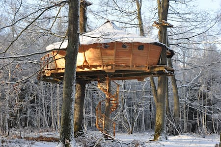 Room type: Private room Property type: Treehouse Accommodates: 5 Bedrooms: 1