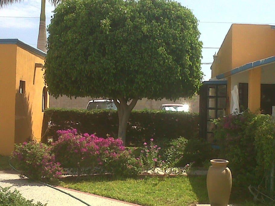 Vacation in La Paz Mexico,bungalows