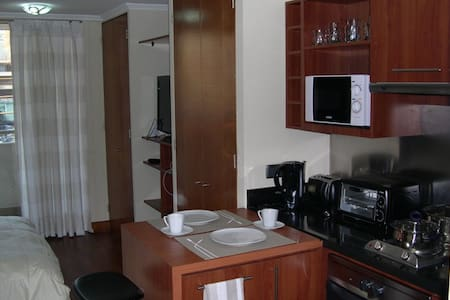 FURNISHED APARTMENT IN PROVIDENCIA1