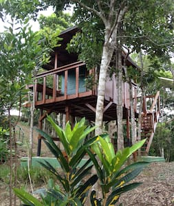 Lake Carite Treehouse - Treehouse