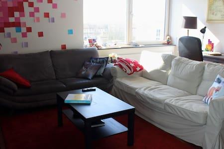 Stylish and spacious apartment - Lakás