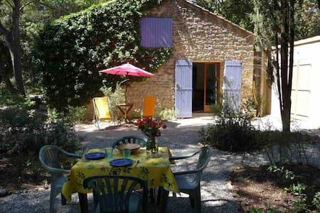 La Nouvelle Peyriere - Peaceful  - Mazan - Villa