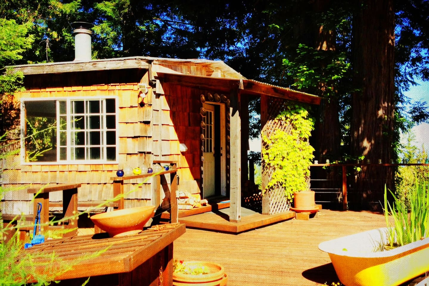 Welcome to Abalone Cottage!   Romantic, rustic charm amidst the redwoods....