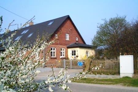 Birdshouse Gobbin / Ruegen Island - Daire