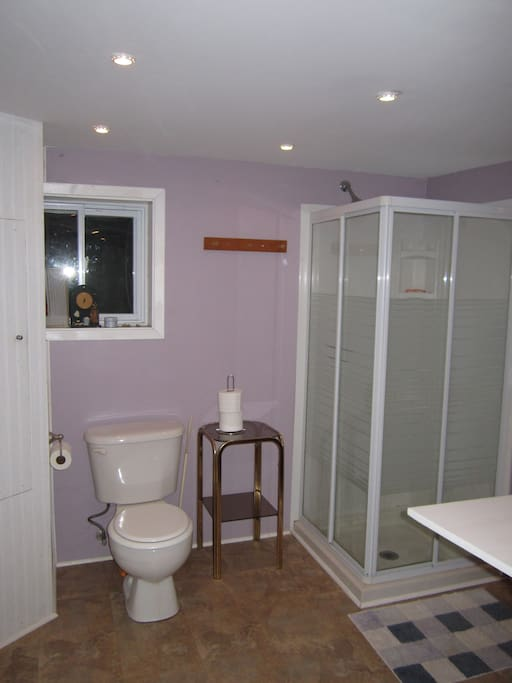 Basement suite with own bathroom