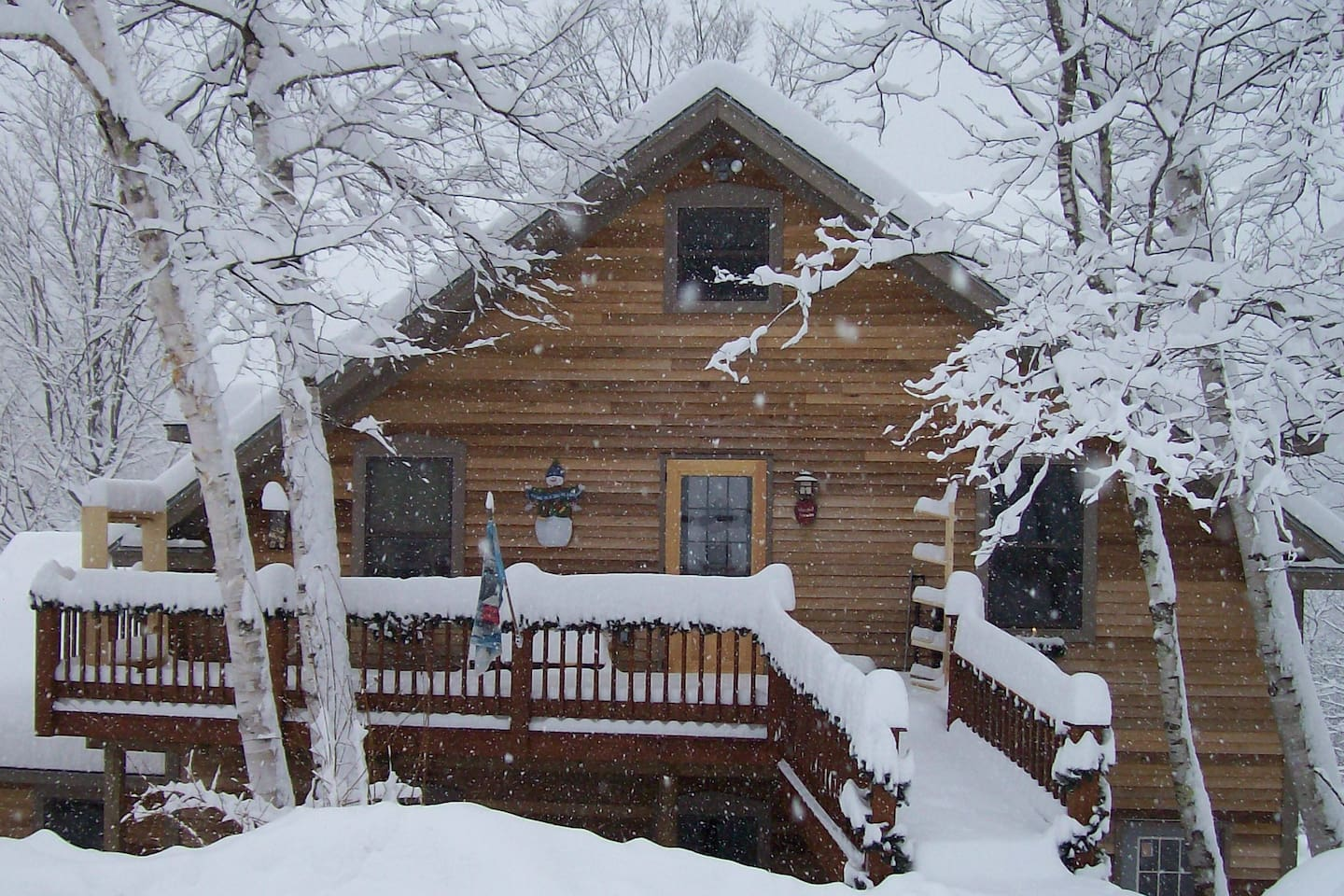 Winter at White Birch Cottage