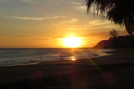 JAH ROOTZ - Treasure Beach - Casa