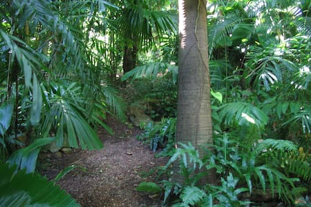 RAINFOREST RETREAT RIGHT NEAR TOWN - Coconut Grove - House