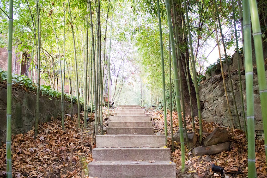 Open the Mensoff gate and an inviting bamboo path leads you up to your home.