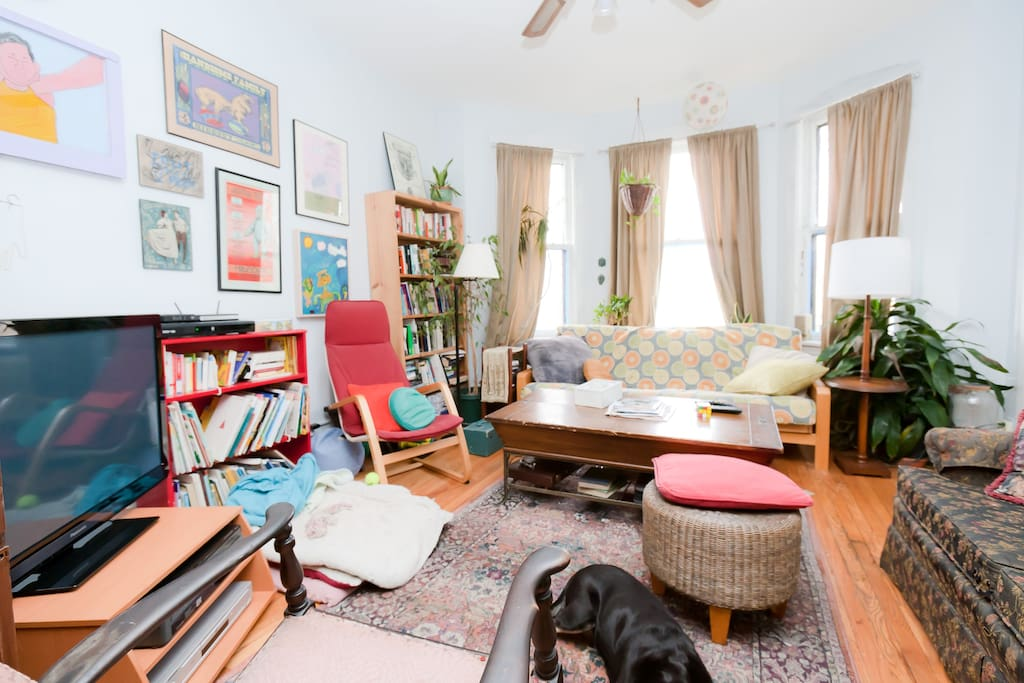 Lived-in living room with books, futon and loveseat, lots of plants. huge TV, and art. Shiny black dog included!