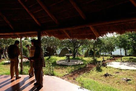 Panorama Safari Camp - 自然地形を利用した家