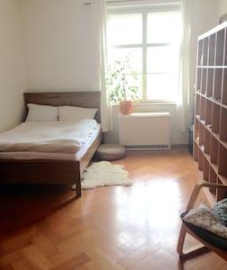 Schönes, ruhiges Zimmer in Altbauwohnung - Apartment