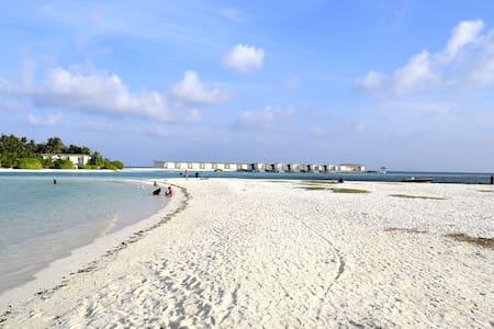 Guraidhoo (Maldives) - Ostrov