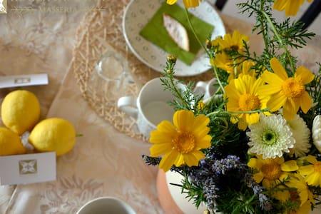 Masseria Rocca Pampina-Stanza n.1 - Mottola - Bed & Breakfast