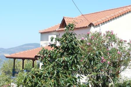 proastio village, messinia, greece - Haus
