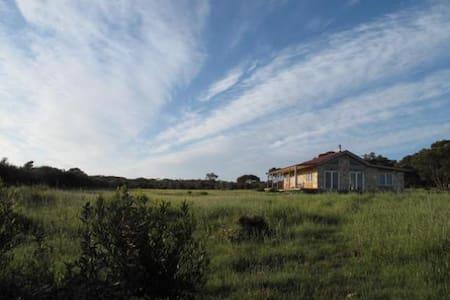 Sea Stone Cottage  - Haus