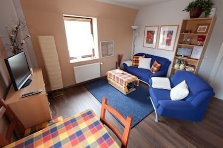 Ferienwohnung A *** in Bad Schlema - Appartement