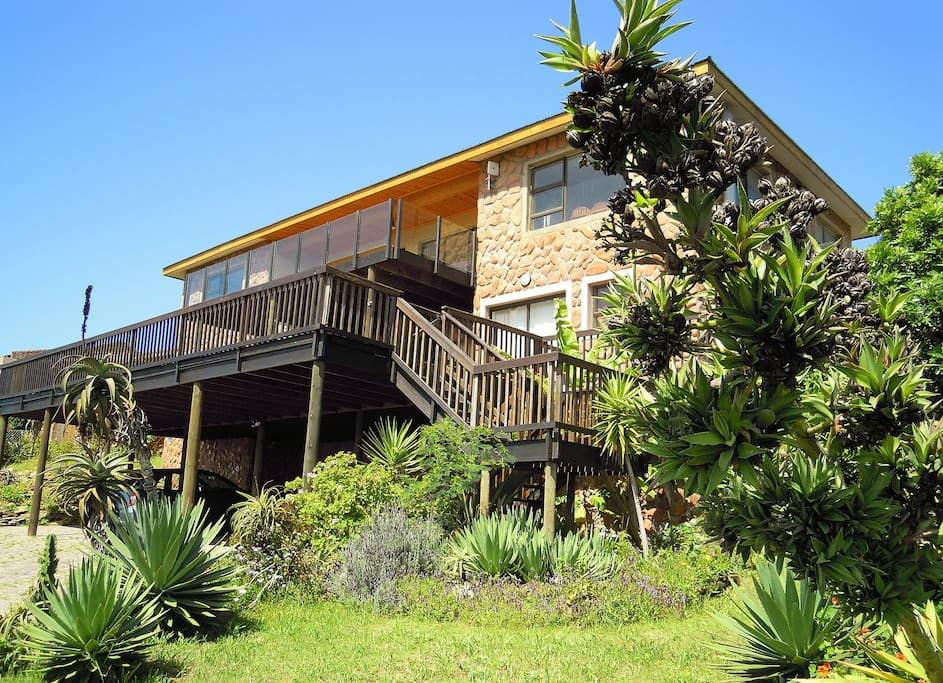 Starfish surf house jeffreys bay houses for rent in for Rent house for a night