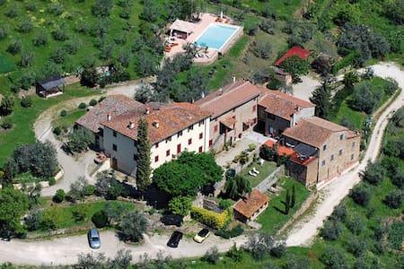 Organic farmhouse near Florence1 - Lägenhet