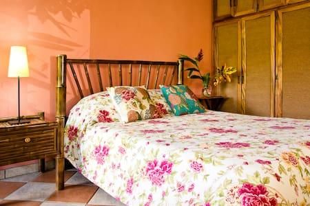 Private room 5 km from Atenas - Atenas, Alajuela - House