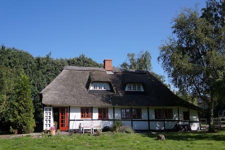 Cottage on the island of Langeland  - House
