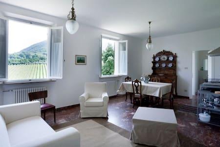 Monte Matello, euganei hills padua - Rovolon - Apartmen