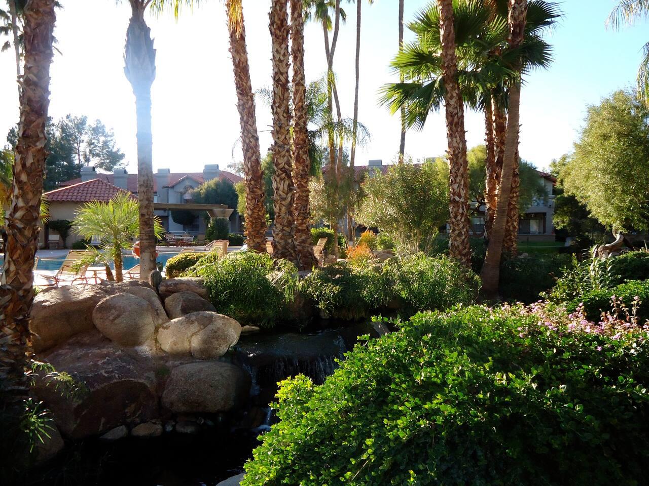 Wonderful Scottsdale Resort Lifestyle